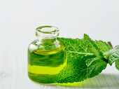 Organic Essential Mint Oil Or Melissa Oil With Green Leaves Of Mint. Mint Melissa Oil On White Woode poster