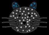 Glossy Mesh Cat With Sparkle Effect. Abstract Illuminated Model Of Cat Icon. Shiny Wire Carcass Poly poster