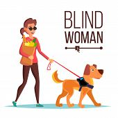 Blind Woman . Person With Pet Dog Companion. Blind Female In Dark Glasses And Guide Dog Walking. Car poster