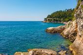 Rocky Seaside Of Adriatic Sea. A Beautiful Seaside With Yellow Rocks And Green Trees. poster