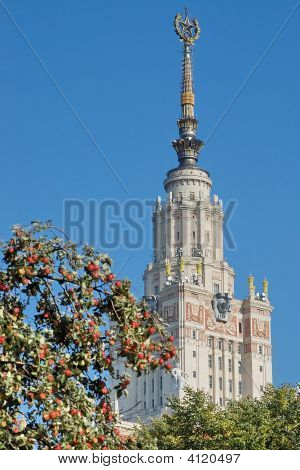 Gold Spire And Apples