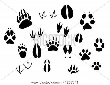 Animal footprints silhouettes