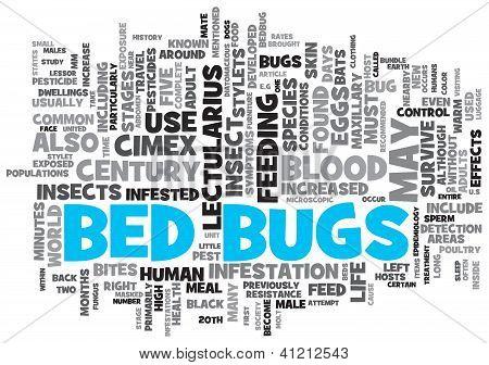 Bed Bugs Concept ontwerp Word Cloud op witte achtergrond