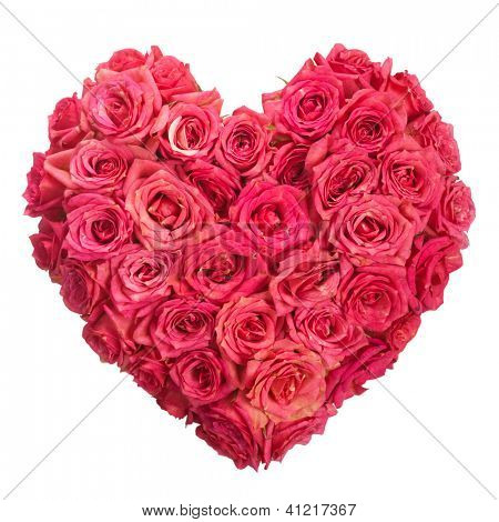 Rose Flowers Heart Over White. Valentine. Love