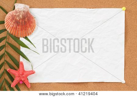 Empty Board With Blank Crumpled Paper, Seashells, Palm Leave And Seashell