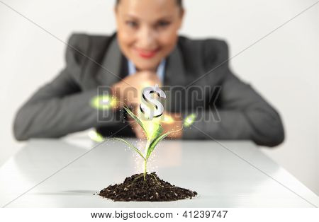 money sprouting