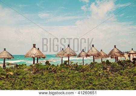 Palapa Sun Roof Beach Umbrellas In Caribbean Sea