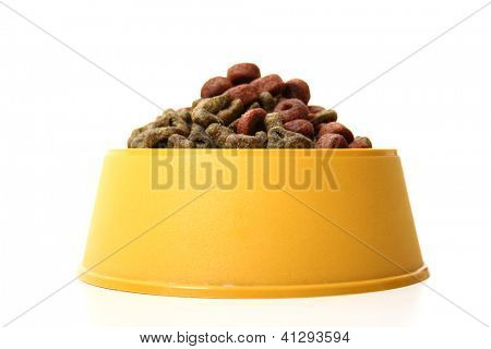 A front view of an isolated dog bowl with dog food on a white background.