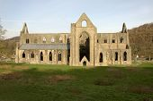 pic of chepstow  - The majestic and wonderful Tintern Abbey Shot in the afternoon - JPG