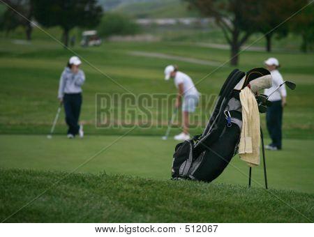 Golfer's Bag