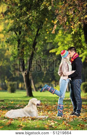Male and female kissing in a park and a labrador retreiver dog watching them