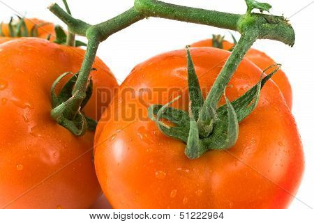Tomatoes With Petiole
