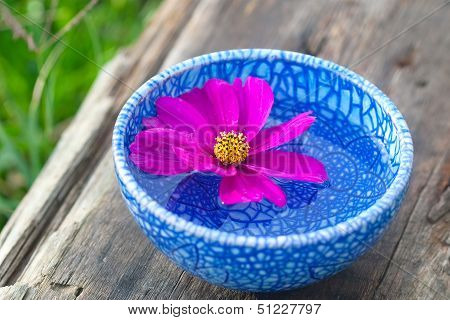 Floating Flower With Violet Petal