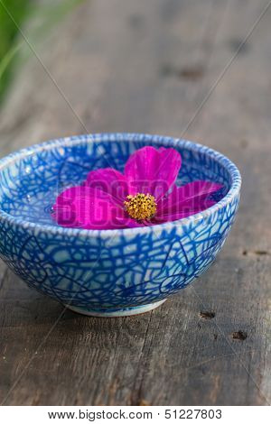 Floating Violet Flower