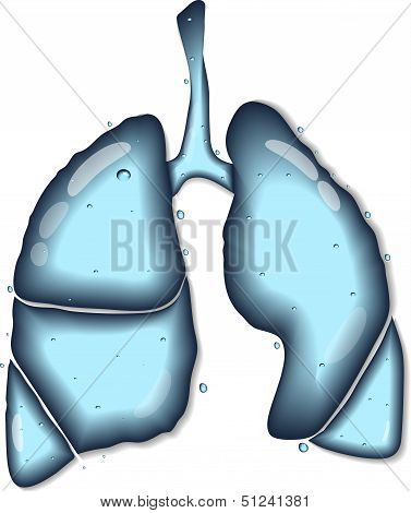 Lungs water concept