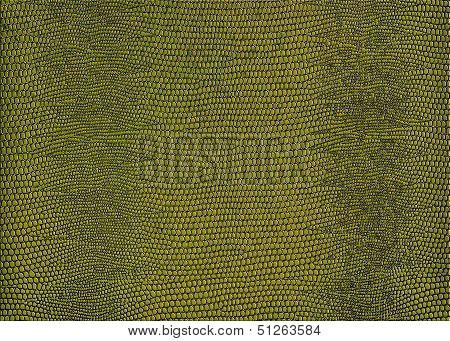 Snakeskin Print In Gold