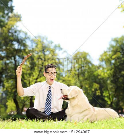 Guy with tie and glasses seated on a green grass playing with labrador retriver dog in a park, shot with a tilt and shift lens