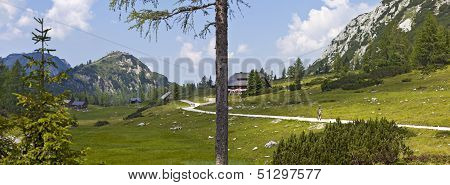 Mother Nature - Landscape Of The Tauplitz -alm In Austria