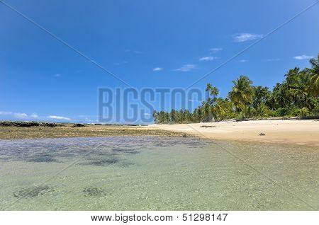 Brasil Taipu De Fora Beach
