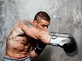 picture of knockout  - Young man in boxing gloves making punch - JPG