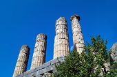 picture of oracle  - Temple of Apollo at Delphi oracle archaeological site in Greece - JPG