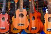 picture of ukulele  - Ukulele guitar - JPG