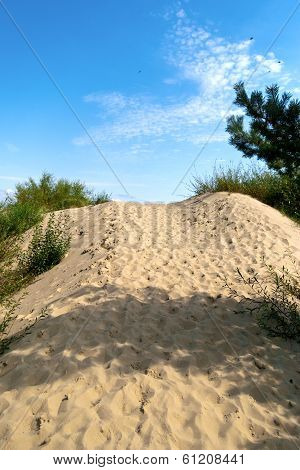 Sand Dunes In The Lithuania