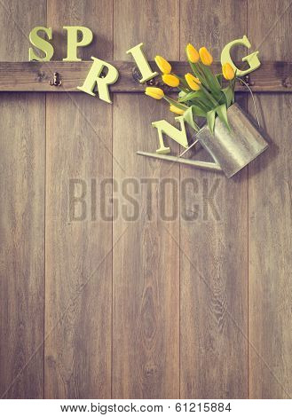 Watering can filled with spring tulips - vintage tone effect added