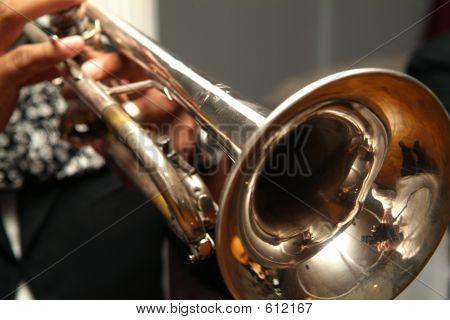 Mirachi Trumpet