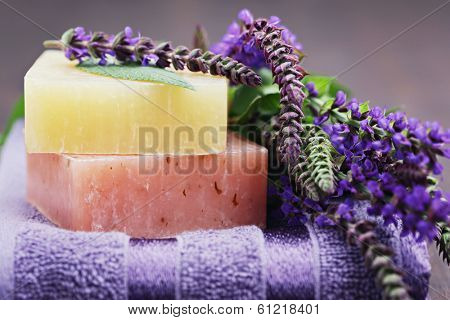 natural sage soap with fresh sage - beauty treatment