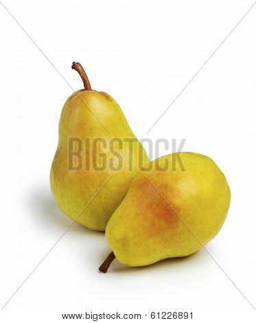bartlett pears on white