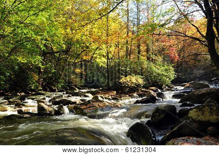 Pigeon River in autumn