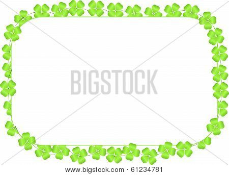 Border Made Of Four-leaf Clovers On A White Background