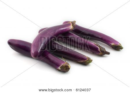 Aubergine/ Eggplant Isolated On White Background