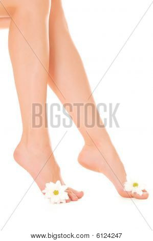 Beautiful Woman Legs With Flower