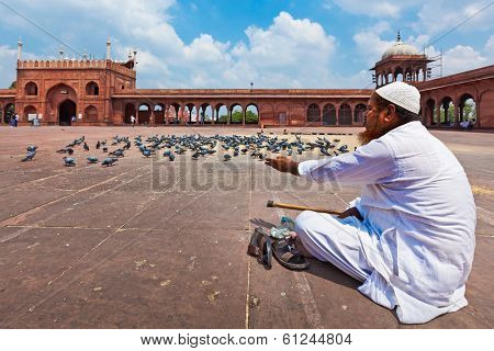 DELHI, INDIA - AUGUST 29, 2011: Muslim man feeding pigeons in India largest mosque Jama Masjid. Pigeons are respected in islam religion.