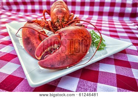 Cooked lobster on a platter on a gingham tablecloth. Texture with filters are added for a grungy look.