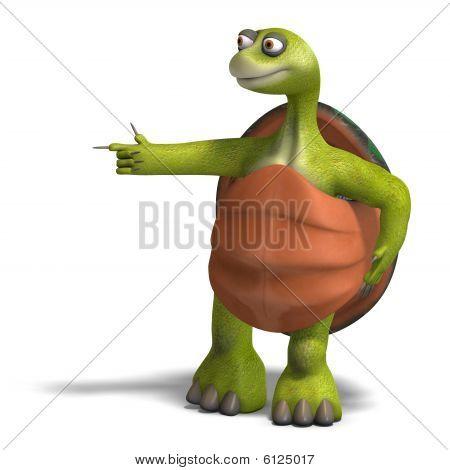 Funny Toon Turtle Enjoys Life