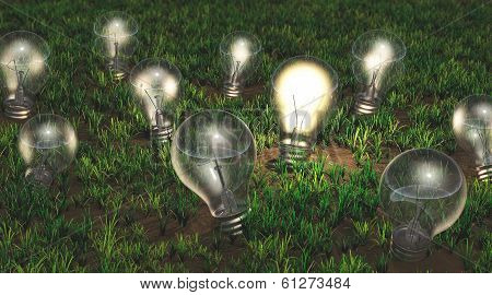 Cultivation Of Ideas