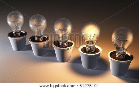 Row Of Light Bulbs In Pots