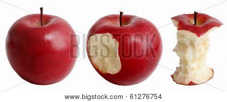 apples at various stages of being eaten