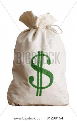 bag of money on white