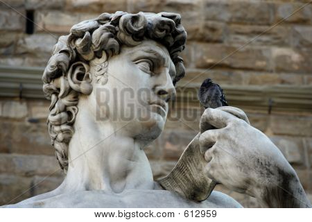 David Talking To A Pigeon
