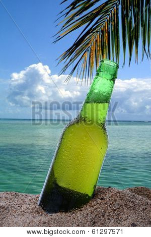 Closeup of a beer bottle stuck in the in the sand on a tropical beach. The ocean clouds and a single palm frond fill the background.
