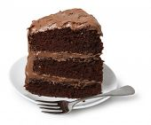 picture of chocolate fudge  - Piece of cake on small dessert plate with fork - JPG