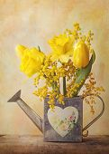 stock photo of mimosa  - Spring flowers in a vase - JPG