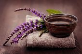 picture of purple sage  - bowl of water and fresh sage  - JPG