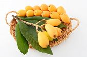 picture of loquat  - Fresh loquats with leaves in a basket