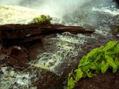 pic of canaima  - River of Canaima Falls next to the large waterfall in Venezuela - JPG