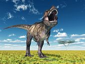 picture of tyrannosaurus  - Computer generated 3D illustration with the Dinosaur Tyrannosaurus Rex - JPG